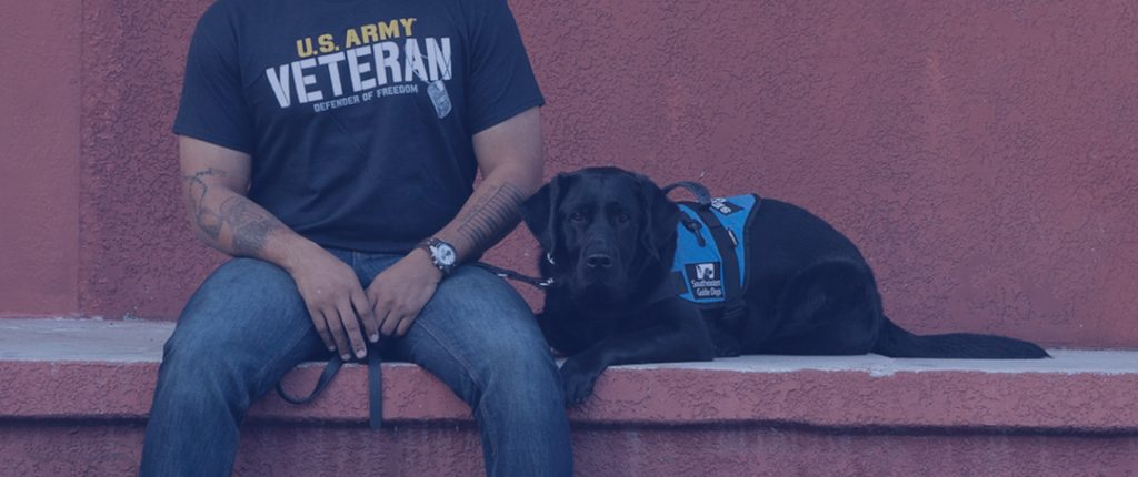 southeastern guide dogs_featureda