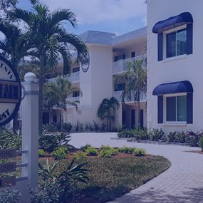 Real estate marketing agency - St. Petersburg Tampa Bay Florida